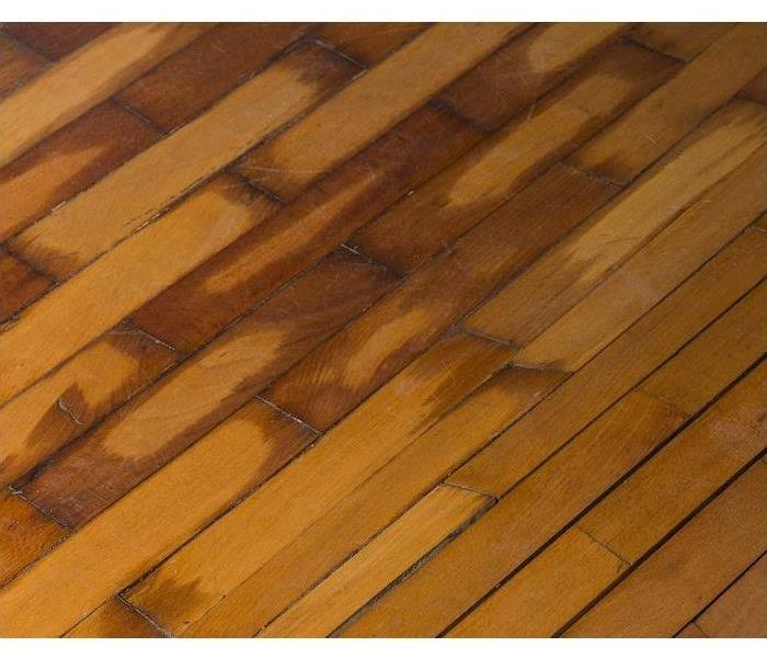 Water Damage Why Fast Water Extraction is Necessary for Hardwood Floors in Hicksville.