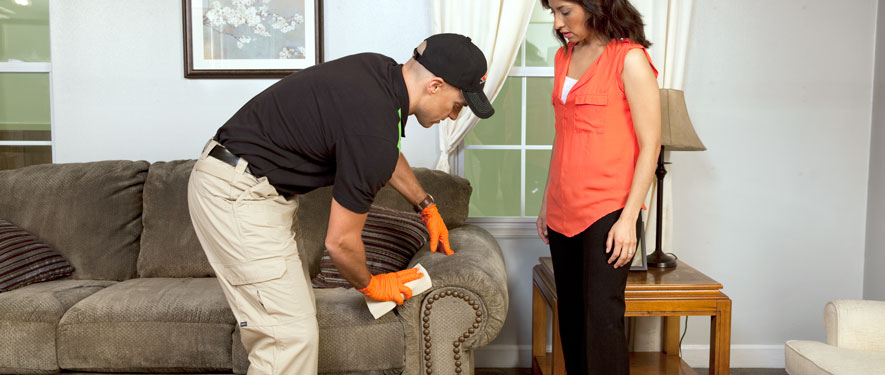 Hicksville, NY carpet upholstery cleaning